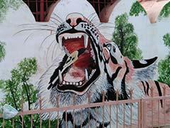 राजस्थान के रेलवे स्टेशन बदल रहे हैं 'आर्ट गैलरी' में, अनोखी चित्रकला कर रही आकर्षित