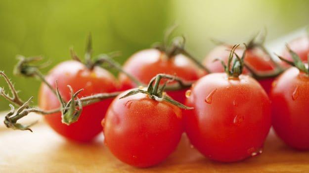 tomatoes 625