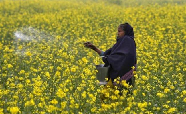पीएम मोदी ने की किसानों से अपील, साल 2022 तक यूरिया के इस्तेमाल को आधा करें