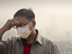 वायु प्रदूषण से होने वाली मौतों में से 75 प्रतिशत भारत में : विश्व स्वास्थ्य संगठन