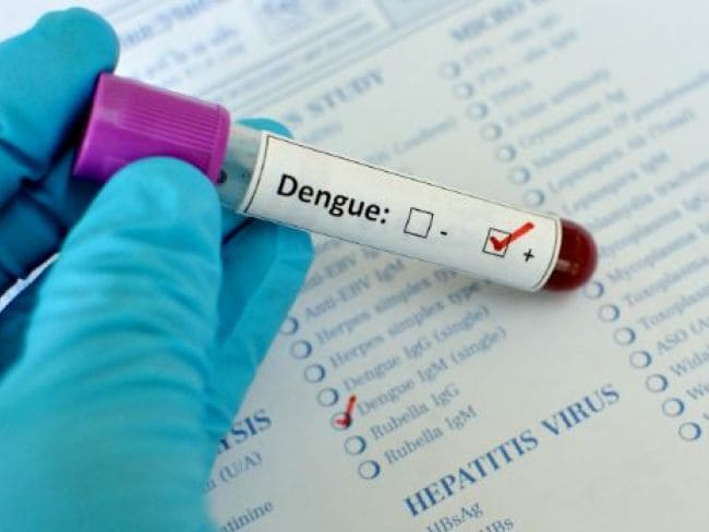 Dengue Deaths Touch 110 in Lucknow, More People Test Positive