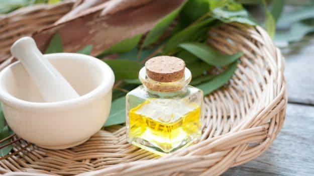 eucalyptus oil 625