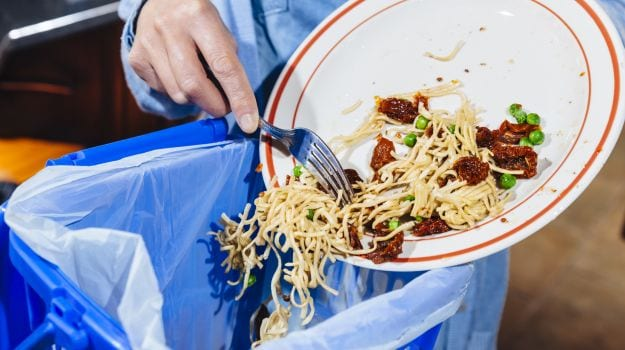 Food Waste May Store Solar And Wind Energy