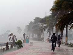 At Least 2 Dead As Hurricane Newton Triggers Mexico