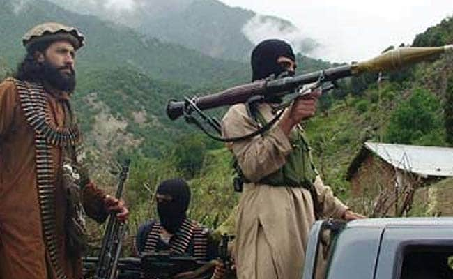 Pakistan 'Harbouring Terrorists' In Afghanistan To Counter Indian Influence: Top US Official