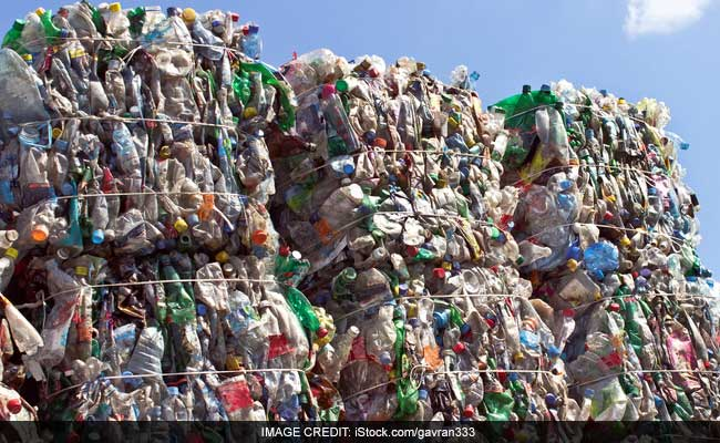 Plastic-Eating Enzyme Is Accidentally Developed, Could Help Fight Pollution