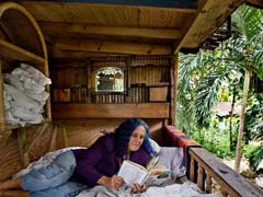 'I'm Not Taking My Treehouse Down,' Vows 'Hippie' Woman Who Has Lived In It For 10 Years