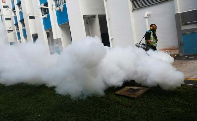 13 Indians Test Positive For Zika In Singapore: Foreign Ministry