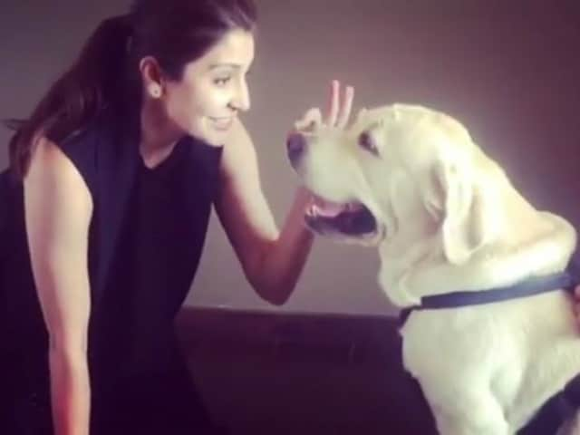 Anushka Sharma Is Back With Another Video With Dude. Such Cutiepies