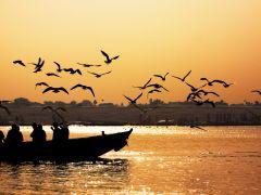 Now, Undertake a Culinary Journey to Banaras