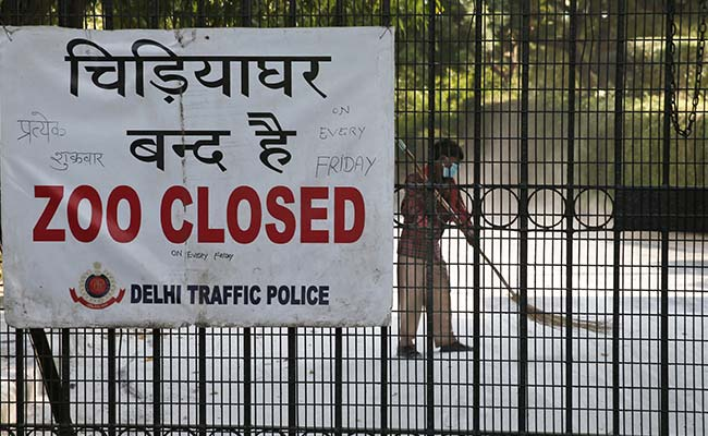 Delhi Zoo Reopens In 2 Shifts With Online Ticket Facility After 105 Days