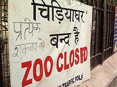 बर्ड फ्लू के चलते दिल्ली का चिड़ियाघर 45 दिनों के लिए बंद, देशभर के लिए एडवाइज़री जारी