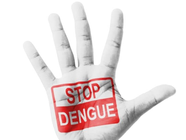 First Vaccination Of Dengue To Be Launched In 11 Countries In Hindi