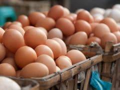 Avoid Half-Cooked Chicken & Raw Eggs: Warns Delhi Government