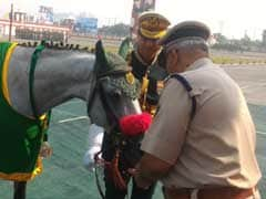 Indo-Tibetan Border Police Dog, Horse Awarded Special Service Medals
