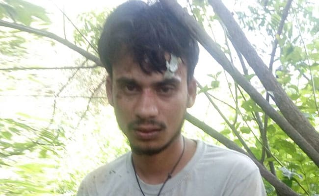 In Hyderabad, Man Arrested For Unnatural Sex, Dog Found Dead