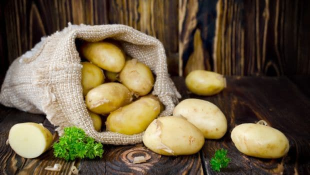 Starch in Bananas, Potatoes, Grains Beneficial for Health