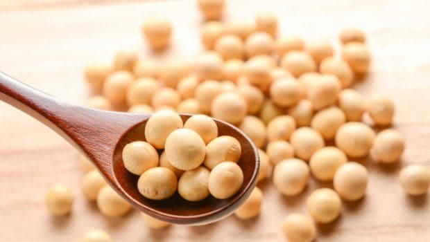 High-Protein Diet: 5 Reasons Why We Must Include Soy Foods In Our Daily Diet