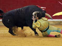 Spain's Top Court Cancels Bullfighting Ban In Catalonia