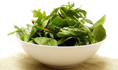 spinach health benefits of spinach