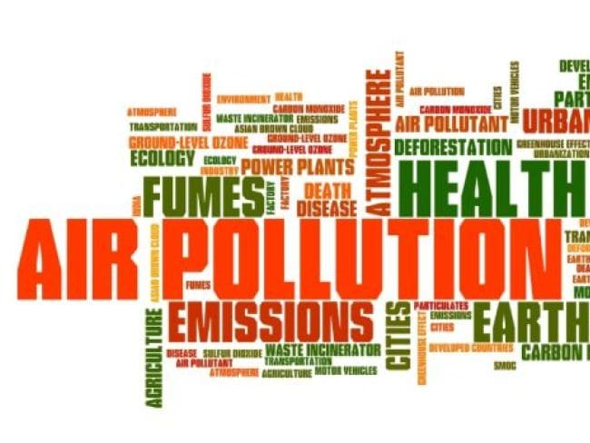 Delhi Government Suggested Steps To Decrease Air Pollution In Hindi