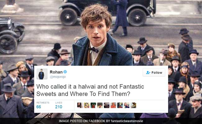 Hilarious Versions Of 'Fantastic Beasts.' Where To Find Them? On Twitter