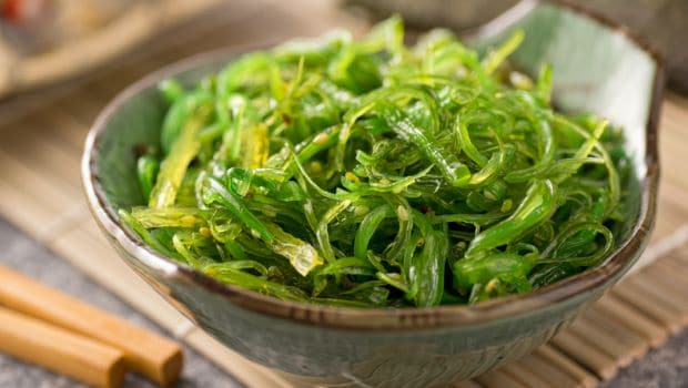 glass seaweed