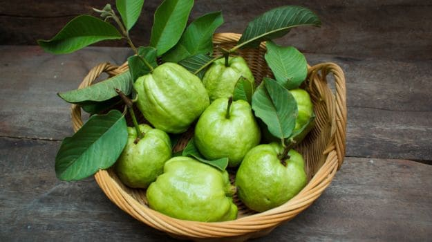 Guava Nutrition: Amazing Guava Nutrition Facts and Benefits You Must Know