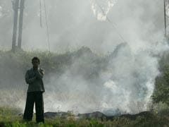 As Delhi Chokes In Toxic Air, Farmers Defend Burning Farmland