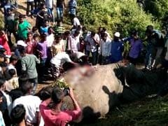 Speeding Train Kills 3 Elephants In Assam