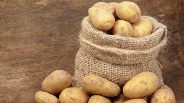 White potatoes burn fat