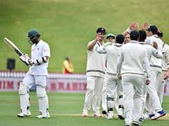 Mominul Haque, Tamim Iqbal shine in New Zealand gloom