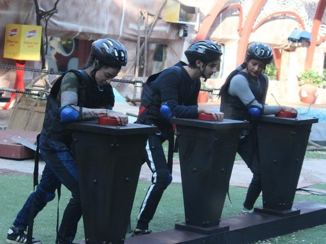 Bigg Boss 10, January 20: Rohan, Bani, Mona Are Up Against Team Manu