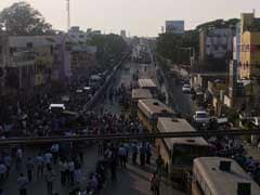 Chennai Traffic Falls Victim To Jallikattu Protests, Arterial Roads Blocked