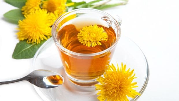 8 Amazing Benefits Of Dandelion Tea For Your Health Ndtv