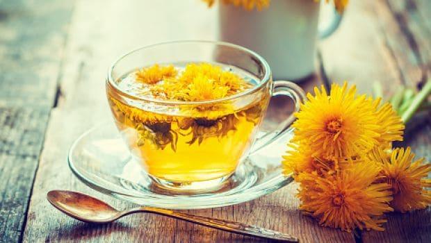 dandelion tea 620