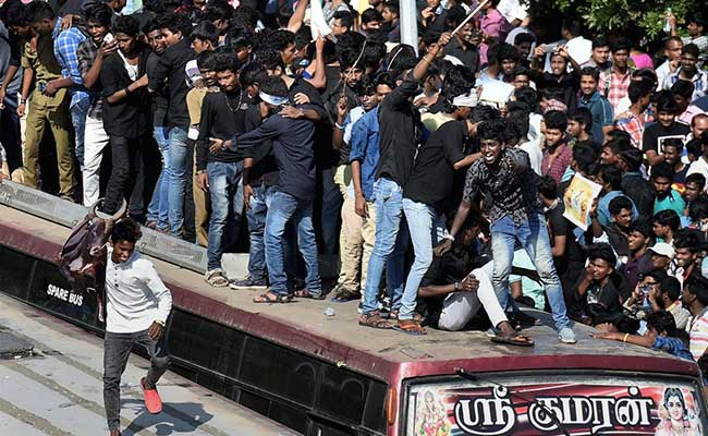 Tamil-Americans Join Ongoing Protest Against Jallikattu Ban In US