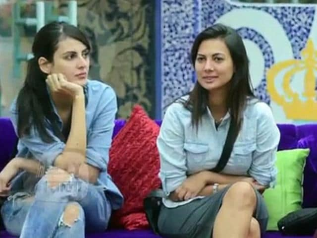 Bigg Boss 10: Ex Contestants Mandana Karimi And Rochelle Rao Catfight On Twitter