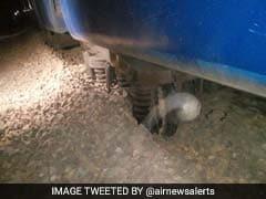 मुंबई: मालगाड़ी के तीन डिब्बे पटरी से उतरे, हार्बर लाइन की सेवा बाधित