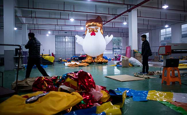 Chinese Factory Hatches Giant Donald Trump Chickens
