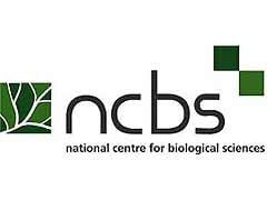 NCBS में जूनियर सिस्टम एडमिनिस्ट्रेटर पदों पर भर्ती, 11 फरवरी तक करें आवेदन