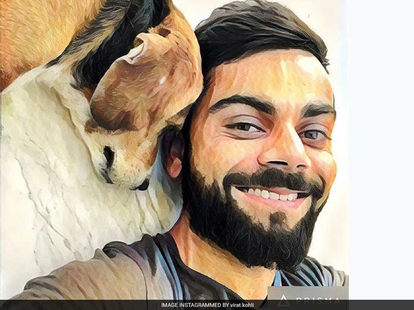 virat kohli with bruno