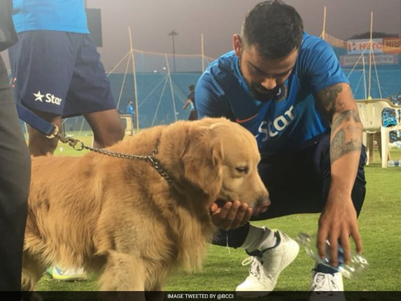 Virat Kohli Makes Friends With Sniffer Dog Prince At Pune Stadium