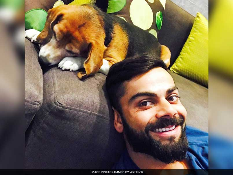 virat kohli with dog