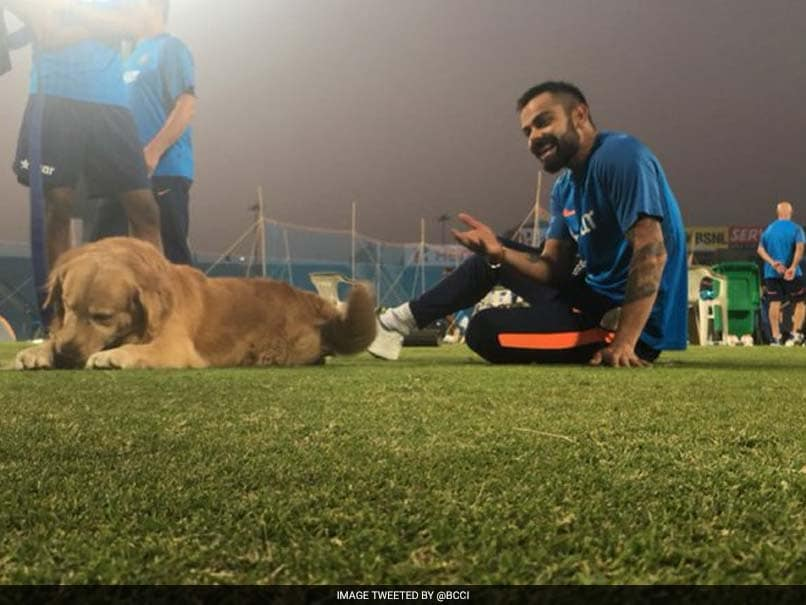 virat kohli with sniffer dog