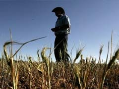 Wanted: High-Tech Graduates To Work With Aussie Farmers