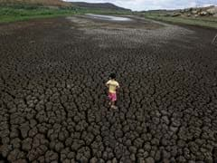 Brazil's Poorest Region Suffers Worst Drought In A Century