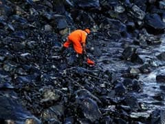 Chennai's Oil Spill Spreading, Say Experts, Amid Massive Clean-Up Effort