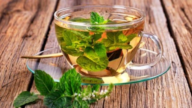 will drinking green tea before bed help you lose weight