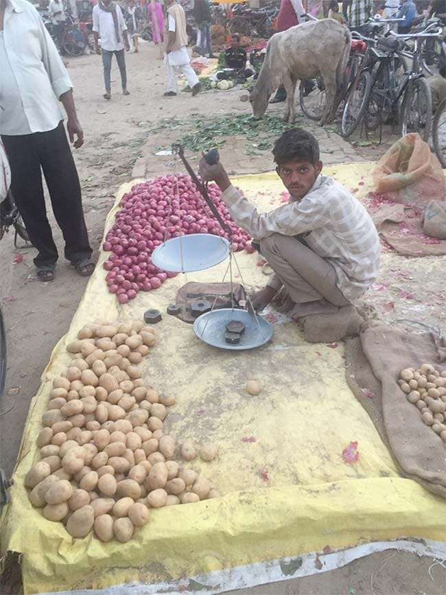 potatoes up 650